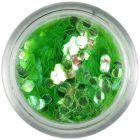 Confetti verde deschis - hexagoane, elemente aqua