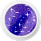 Gel UV colorat holografic – 341 Dark Purple Shadow, 5g