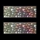 Folie decorativă pentru unghii - holografică cu motive de trandafiri